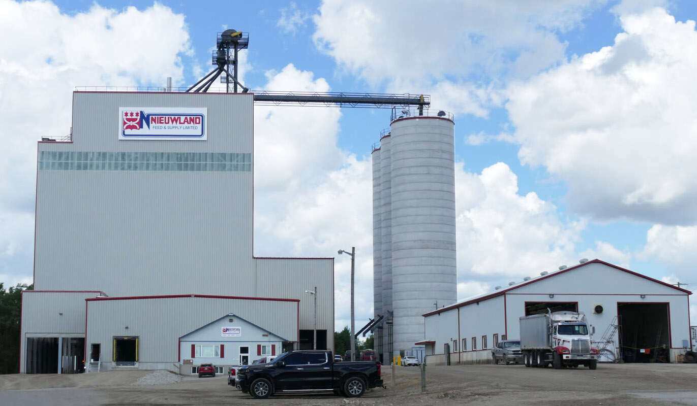Nieuwland Feed, Nieuwland feed & Supply listowel, Nieuwland feed & supply drayton, nieuwland feeds, feed mill near me, feed mills near me, feed mills in Ontario, feed mill, livestock feed, contact, contact us